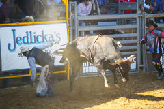 Bull Riding Royalty Free Stock Photography