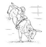 Bull Riding. On a white background Royalty Free Stock Image