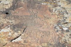 Bull rock paintings Royalty Free Stock Photos