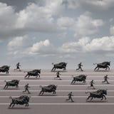 Bull Run Stock Photos
