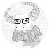 Bull  in a scarf and glasses. Royalty Free Stock Images