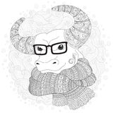 Bull  in a scarf and glasses. Stock Image