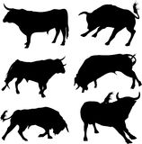 Bull set. Six different silhouettes Royalty Free Stock Images