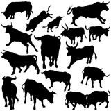 Bull Set Silhouettes Royalty Free Stock Image