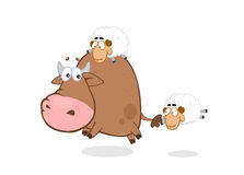 Bull & sheep Royalty Free Stock Images