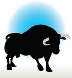 Bull Silhouette Stock Image