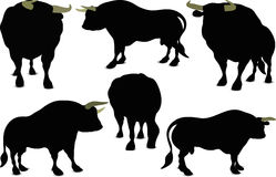 Bull Silhouette Royalty Free Stock Photo