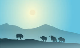 Bull silhouette in mountain scenery Royalty Free Stock Photos