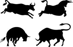 Bull silhouettes Stock Photos