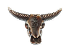 Bull skull Royalty Free Stock Photo