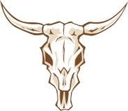 Bull skull Stock Images