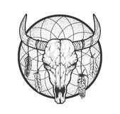 Bull skull with feathers native Americans tribal style. Tattoo blackwork. Vector hand drawn illustration. Boho design. Bull skull with feathers native Americans Stock Images