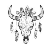 Bull skull with feathers native Americans tribal style. Tattoo blackwork. Vector hand drawn illustration. Boho design. Bull skull with feathers native Americans Royalty Free Stock Photos