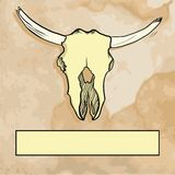 Bull skull with label Royalty Free Stock Photography