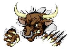 Bull sports mascot breaking wall Stock Image