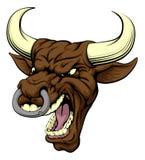 Bull sports mascot Stock Image