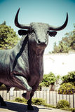 Bull statue in front of the bullfighting arena in Ronda, Spain Royalty Free Stock Photo