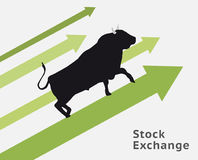 Bull stock concept. Raising up. Making profit Royalty Free Stock Photo