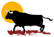 Bull and sun Stock Photo