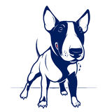 Bull Terrier. Cartoon Style English Bull Terrier Royalty Free Stock Images