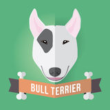 Bull terrier Fotografia Stock Libera da Diritti