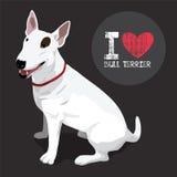 Bull terrier Immagine Stock