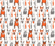 Bull-terrier in color background Stock Photo