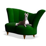 Bull Terrier Dog. 3D rendering with clipping path and shadow over white Royalty Free Stock Photos
