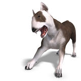 Bull Terrier Dog. 3D rendering with clipping path Royalty Free Stock Image