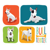 Bull Terrier. Vector color sketch of cheerful smiling Excellent Bull Terrier Stock Photography