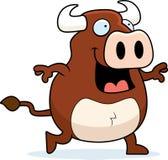 Bull Walking Royalty Free Stock Photo