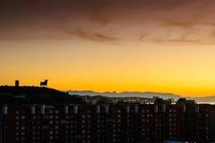 Bull Watching The Mediterranean Sunset Stock Photo