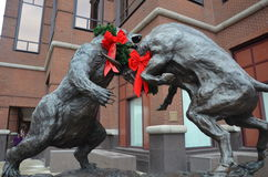 Bull y oso Imagen de archivo libre de regalías