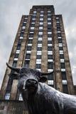 BullCity达翰姆NC公牛雕象和小山大厦 库存照片