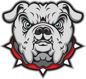 Bulldog. This is a bulldog ready for game time stock illustration