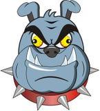 Bulldog royalty free illustration