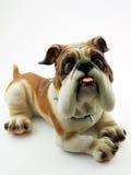 Bulldog Stock Photos