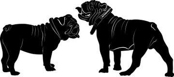 bulldog illustrazione vettoriale