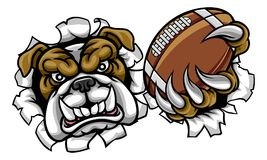 Bulldog American Football Sports Mascot Stock Photography