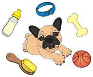 Bulldog around his stuffs. Happy puppy of beige french bulldog lying around his stuffs Stock Photo