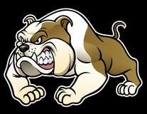Bulldog arrabbiato illustrazione vettoriale