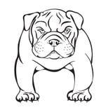 Bulldog arrabbiato royalty illustrazione gratis