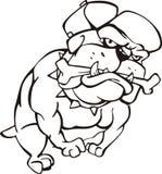 Bulldog with bone Royalty Free Stock Image