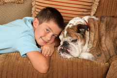 Bulldog and Boy Stock Images