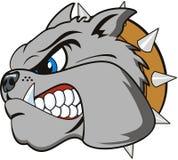 Bulldog cartoon Stock Photography