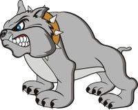 Bulldog cartoon. Vector bulldog  very angry on withe background Stock Photos