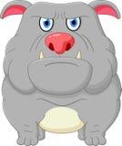 Bulldog cartoon Royalty Free Stock Photos
