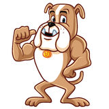 Bulldog Cartoon Mascot Character. Vector Royalty Free Stock Photos