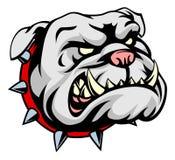 Bulldog Cartoon Mascot Stock Images
