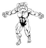 Bulldog character attacking. A mean tough muscular bulldog sports mascot character advancing with claws out Royalty Free Stock Images